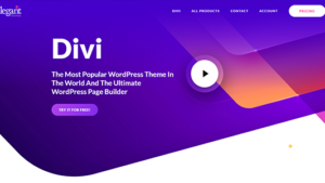 Divi Theme The Most Popular WordPress Theme