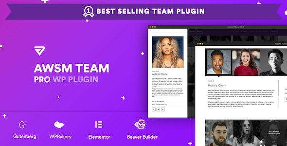 The Team Pro Team Showcase WordPress Plugin